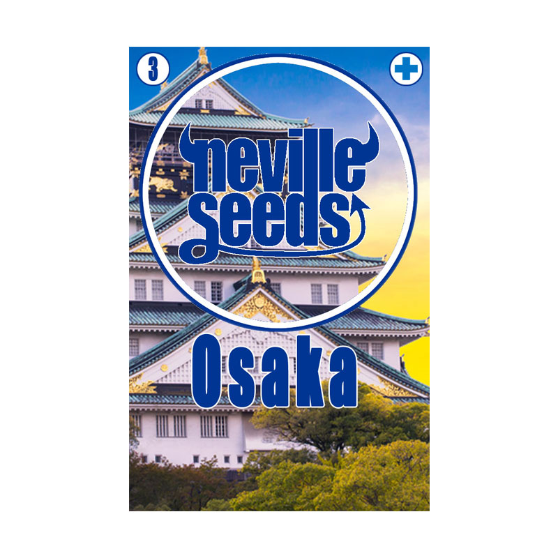 Semillas 21,6% CBD Osaka
